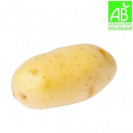 Pommes de terre Bio (1 kg)