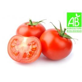 Tomates paola Bio (5 kg)