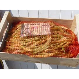 Haricots Tarbais frais Label Rouge (5 kg)