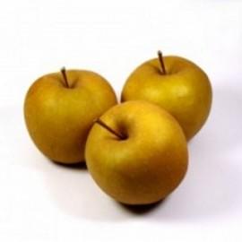 Pommes Bertanne (1 kg)