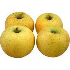 Pommes Chantecler (1 kg)