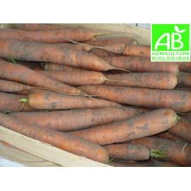 Carottes Primeur Bio (1 kg)