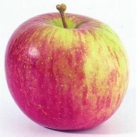 Pomme Fuji (1 kg)