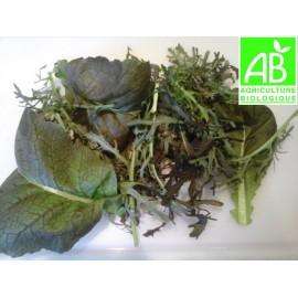 Mesclun salade Ozaka et Mizuna Bio (150 g)