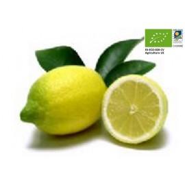 Citrons Bio (1 kg)