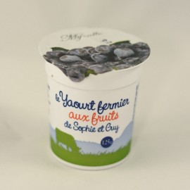 Yaourt Myrtille (125 g)