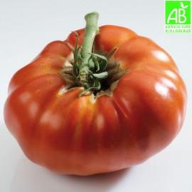 Tomates russe Bio (500g)